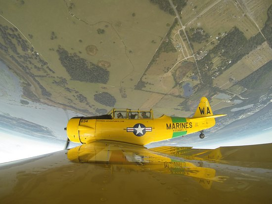 Warbird Adventures : ME piloting the T-6 TEXAN!