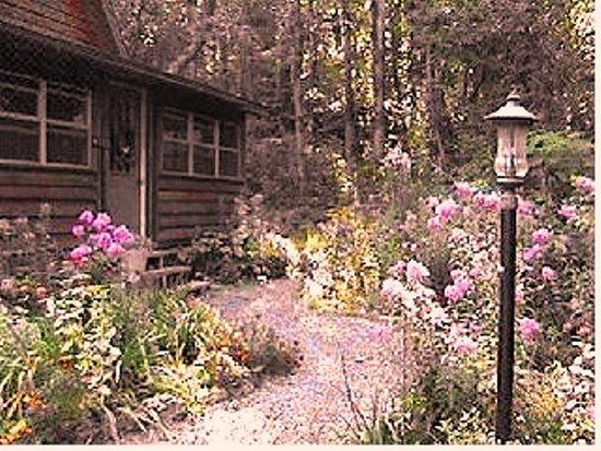 willowbrook cabins rv updated 2017 prices cottage. Black Bedroom Furniture Sets. Home Design Ideas