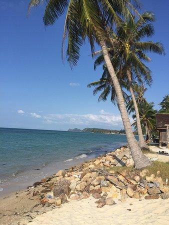 The Relax Beach Resrot: photo0.jpg