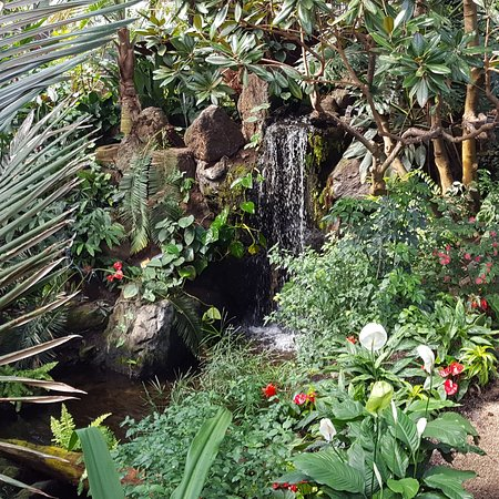 Photo of Nature Preserve Bloedel Conservatory at 4600 Cambie St, Vancouver V5Z 2Z1, Canada