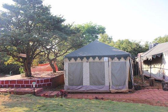 Mahabaleshwar Camps and Resorts ( MCR )