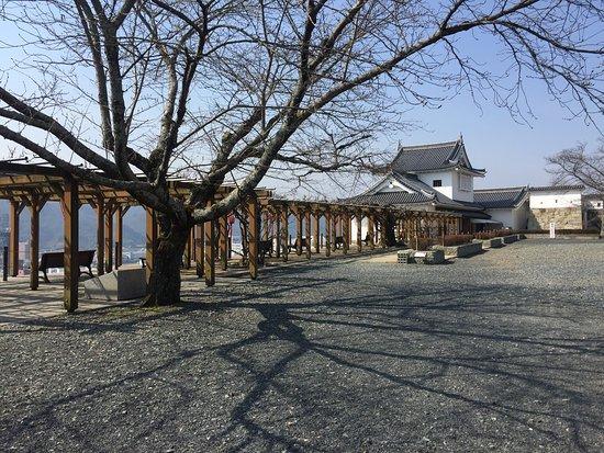 Kakuzan Park (Tsuyama Castle): photo0.jpg