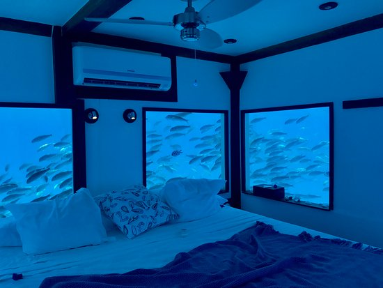 The Underwater Room Picture Of The Manta Resort Pemba Island Tripadvisor