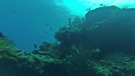 Padangbai, Indonesia: Blue Lagoon