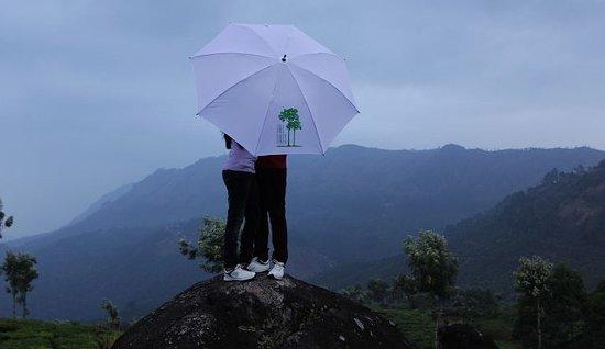 The Tall Trees Munnar: Honeymoon never sets at Tall Trees