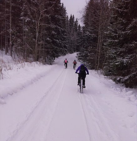 Jyväskylä, Finlandia: Grab some friends and go adventure