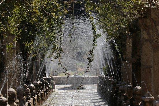 Bunyola, Spanien: photo1.jpg