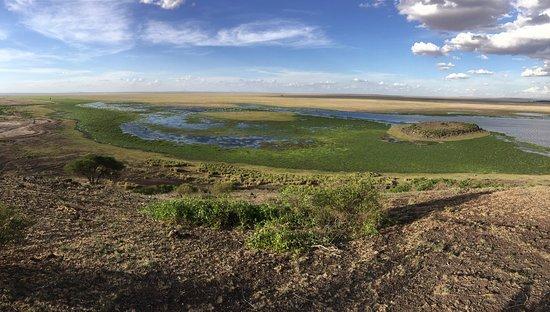 Amboseli National Park, Kenia: photo8.jpg