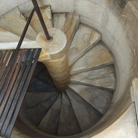 Scala a chiocciola foto di torre di pisa pisa tripadvisor - Tipologia di scale ...
