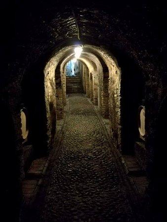 Neive, İtalya: foto della cantinetta