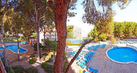 Playa de Palma Picture