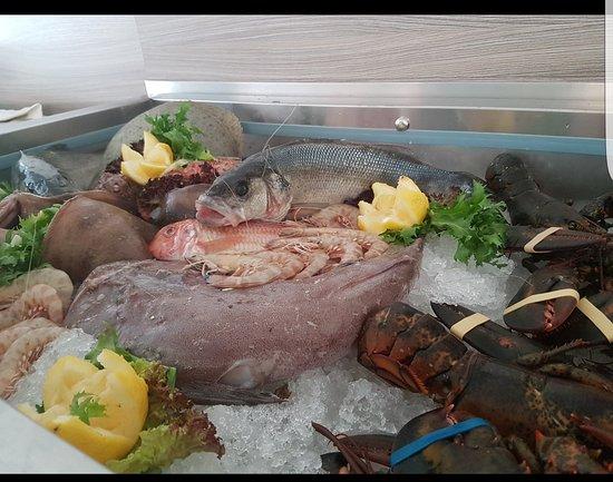 Hotel - Ristorante Rinelli: Il nostro pesce fresco