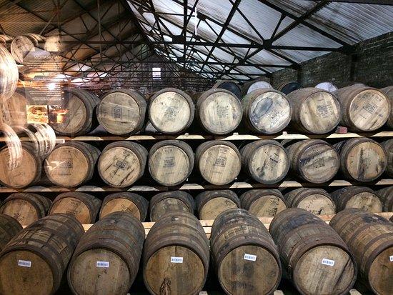 Auchentoshan Distillery : photo1.jpg