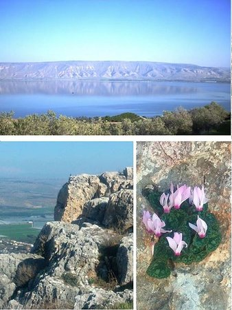 Galilea, Izrael: Nature attractions close by