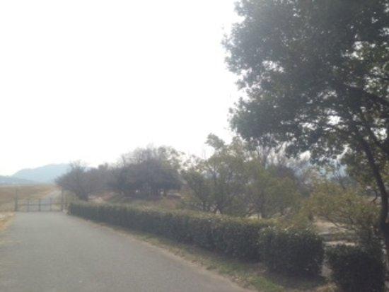 Kasaoka 사진