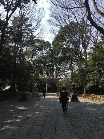 Kunitachi, Japón: photo1.jpg