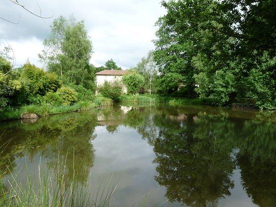 Dordogne, Frankrig: Etang pour la pêche