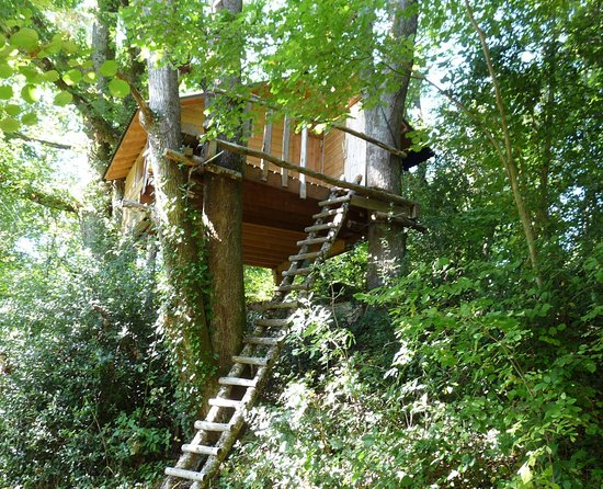Dordogne, Frankrig: Cabane perchée au milieu des bois