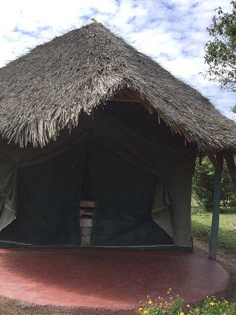 Masai Mara Manyatta Camp : Our tent