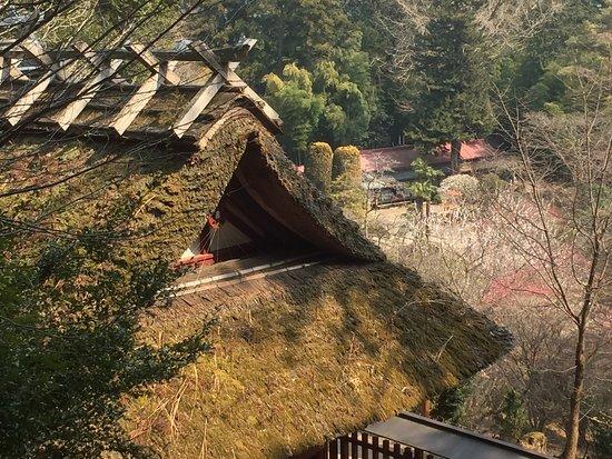 Hanno, Japan: photo1.jpg
