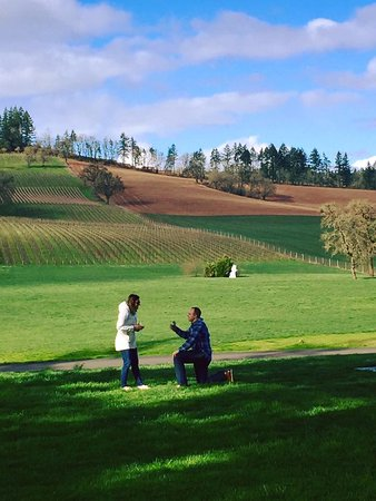 Dayton, OR: Great backdrop for a proposal