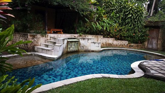 Mas, Indonesia: Private pool at one of the villas