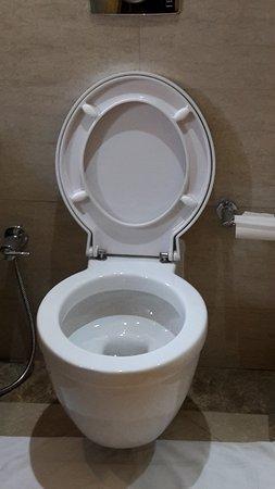 Raintree Hotel, Deira City Centre: Posizione tavoletta del PC e carta igienica dopo pulizie...