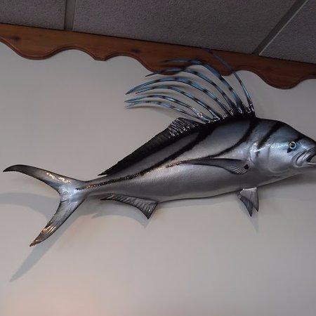 Milford, DE: interesting fish