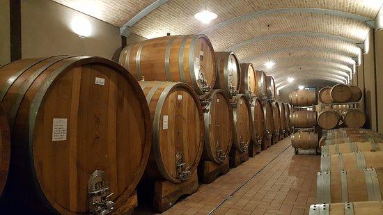 Серралунга-д'Альба, Италия: 20170320_092933_large.jpg