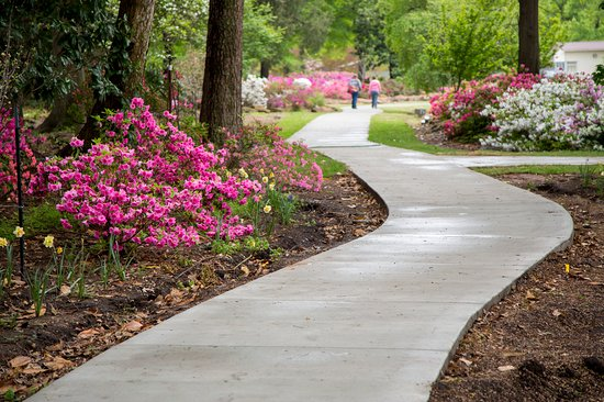 โอคลาโฮมา: Azaleas bloom at Honor Heights Park in Muskogee. Photo by Lori Duckworth.
