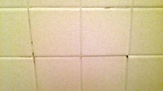 Lebanon, OH: cracked grout and mold