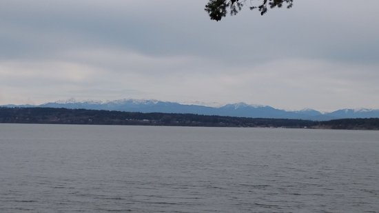 Camano Island, WA: Picnic views