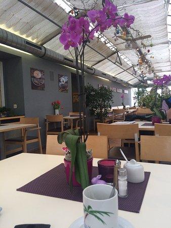 Cadolzburg, Germany: Wir waren spontan zum Kaffeetrinken im Gewächshaus. Der erste Eindruck,in das Lokal müsste wiede