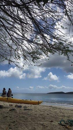 Tamarindo Beach : photo2.jpg