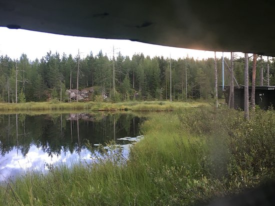 Kuhmo, Finnland: This was in the summer 2016