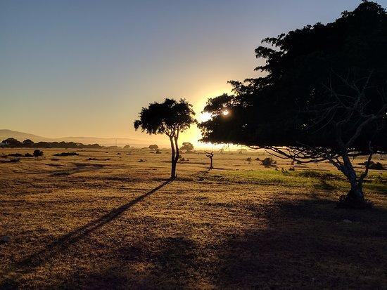 Bredasdorp, Sudáfrica: Abends auf dem Weg zum Dinner