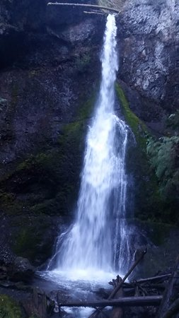 Port Angeles, Waszyngton: Marymere waterfalls at Olympia National Park