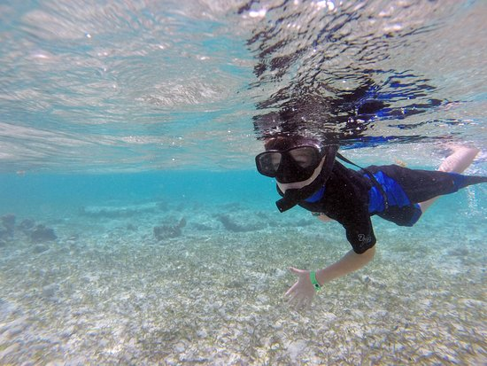 Mar Adentro Diving: Snorkeling right off the beach