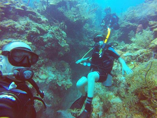 Mar Adentro Diving: Costa Maya