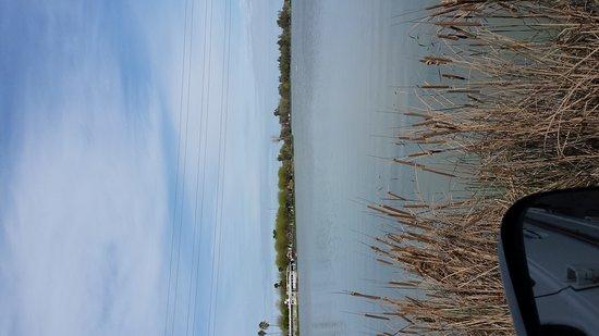 Nicolaus, CA: Lake minden