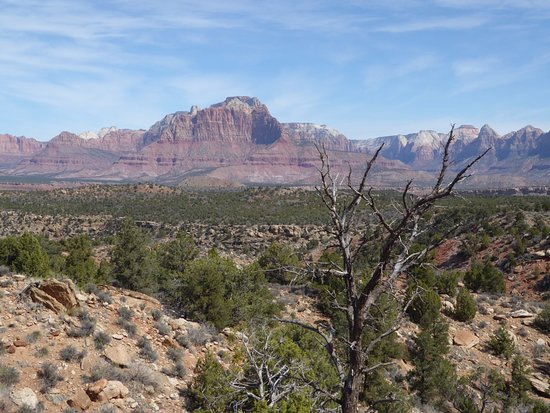Grafton: View towards mountains west of Zion