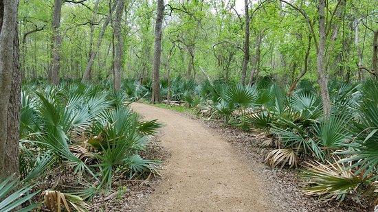 Gonzales, TX : Palmetto State Park
