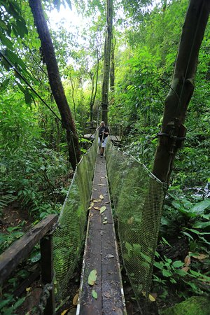 Parrita, Costa Rica: swinging bridge