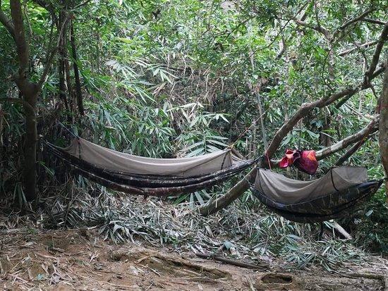 Banlung, Camboya: Green jungle Trekking-Tours