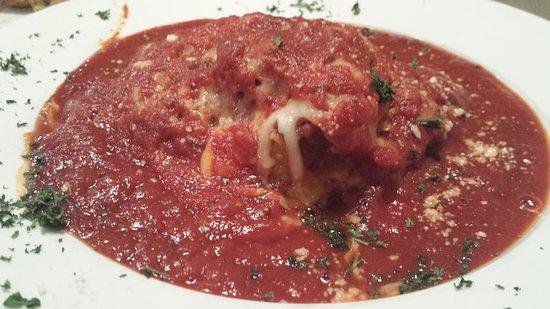 Newton Falls, OH: Lasagna... drowning in sauce