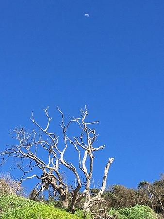 Chintsa, Sudáfrica: photo2.jpg