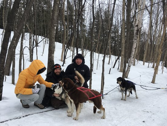 Wentworth Nord, Canada: TRAINEAU A CHIEN