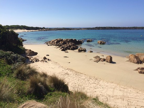 Île King, Australie : Just a short walk from the cottage.