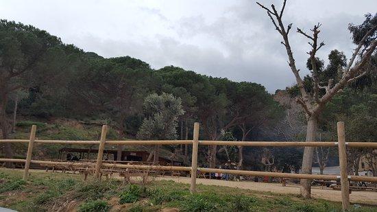 Cabrera de Mar, España: Font Picant Cabrera