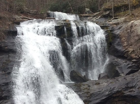 Tellico Plains, TN: Nice full waterfall,I noticed if you look to the right while standing on the bridge you will see